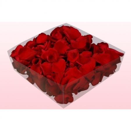 Rosenblätter echt, 2 Liter - konserviert Farbe Rot