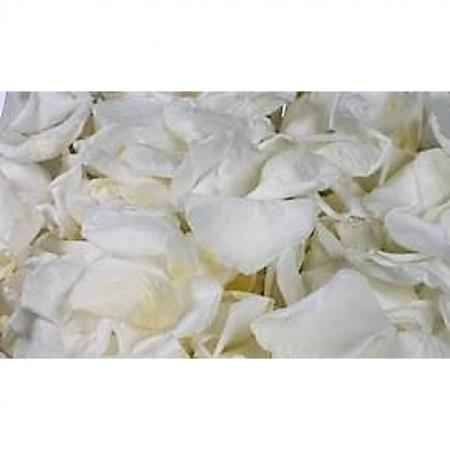 Rosenblätter echt, 1 Liter - konserviert Farbe Weiss
