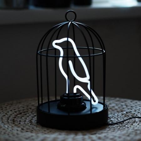 Neonvogel in einem Käfig