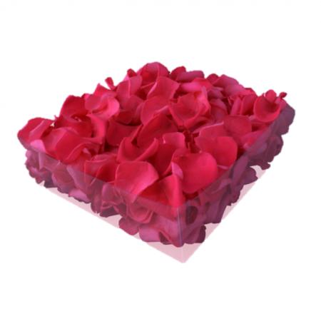 Rosenblätter echt, Pink 2 Liter - konserviert